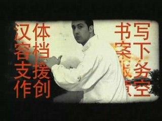 Michaël Guigou - Le kung-fu