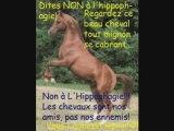 nn a l'hippophagie un cheval ca ne se mange pas!!