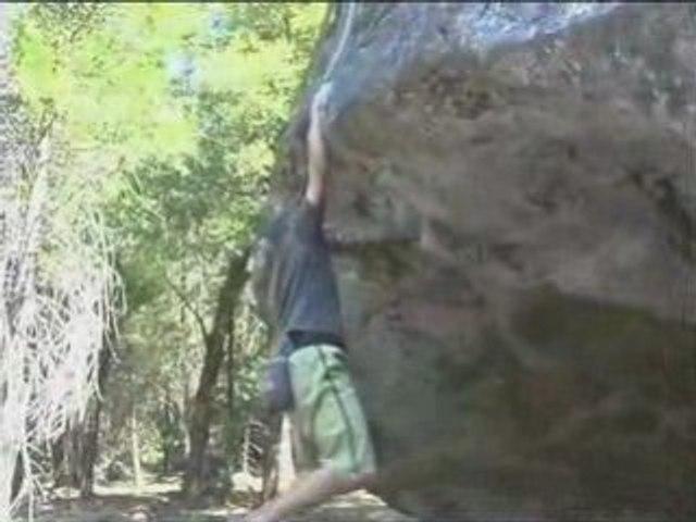 Action Adept Yosemite Valley Trailer