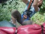 20080809 - Arbres en arbres