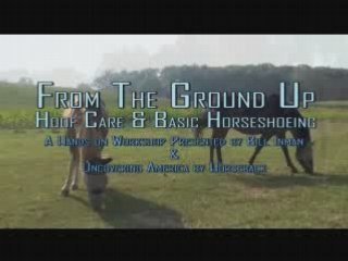 Hoof Care and Basic Horseshoeing Workshop