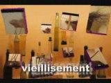 Musée du vin de bourgogne (beaune)