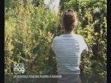 Cuisine plantes sauvages et  fleurs comestibles avec Pierrette Nardo