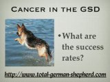 Cancer in the GSD