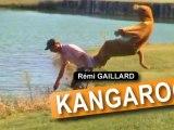 un kangourou pas comme les autre !!!