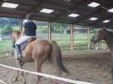 Carrousel Fête du cheval 21 septembre 2oo8