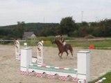 concours sauts aurélie 21 fev 08