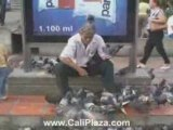 Cali Hotels - Man covered with birds. Cali Colombia Park.