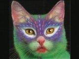 Peinture sur chat