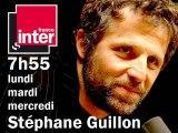 Stéphane Guillon n'est pas au conseil constitutionnel