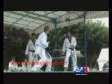 Démo de Taekowndo/Hapkido du Cénacle Rémi Mollet