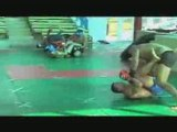 Fedor Emelianenko  The Fighting System of the King of MMA