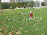 Normandie Septembre 2008