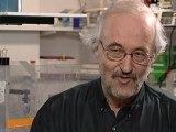 EfferveSciences - Michel BORNENS - Cellules et prolifération cellulaire