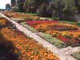 Balchik-Jardin Botanique (3)