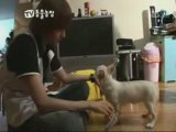 [Anou] Super Junior - Animal Farm Ep 2  part 2-2[french sub]