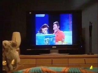 Arthur à la télé