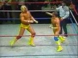 Hulk Hogan vs. Macho Man Randy Savage WWF Title