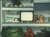 leguman VS le mixeur