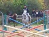 Daphné et Onyx saut 2