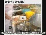 delicious red lobster tails grilling recipes