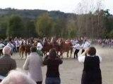 prix de famille breton, maurs, le 18-10-2008