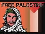 Brixton cats - Palestine