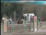 concours  saut d'obstacle saint-lunaire oscar et moi club2
