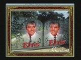 Blue eyes crying in the rain : Elvis par kristof Daka