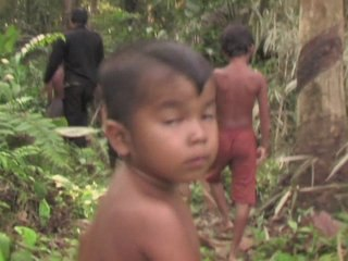 State of the Forest - Land Rights Conflicts