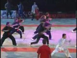 Féstival des Arts Martiaux Bercy 2008  -  Kung-Fu Shan