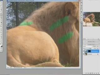 Visionnez les Cours Vidéo de Teinte et Saturation - Explications du fonctionnement de ce filtre Photoshop