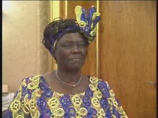 Afrique et Paix : Wangari Maathai