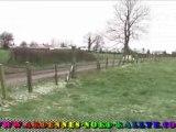 Rallye Ternois 2008 - n°70/93 - ES3 - Ardennes-Nord Rallye