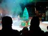 spectacle sur glace 4
