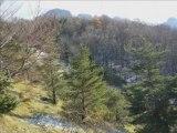 Balade au Col de Tourniol   (26 Vercors nord)