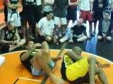 Antonio Minotauro Nogueira Demos Armbar #2