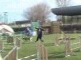 AGILITY JUMPING SELECTIF GPF LAON 2008