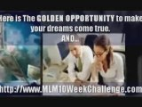 MLM, Network Marketing And Attraction Marketing Training