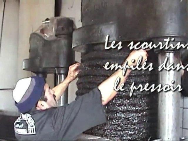 Extraction de l'huile d'olive