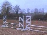 Concours poneys 16/11/08 avec Illico