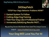 Stop Dog Barking FAST! Use our basic dog obedience training