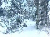 neige !    jack russel 2