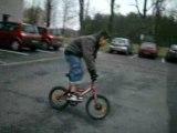 mini bmx hears riders prod
