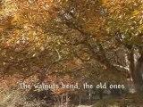 Toamna ( Autumn) Tudor Gheorghe