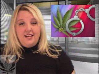 The Reefer Report: Medical Marijuana News for Nov. 26, 2008
