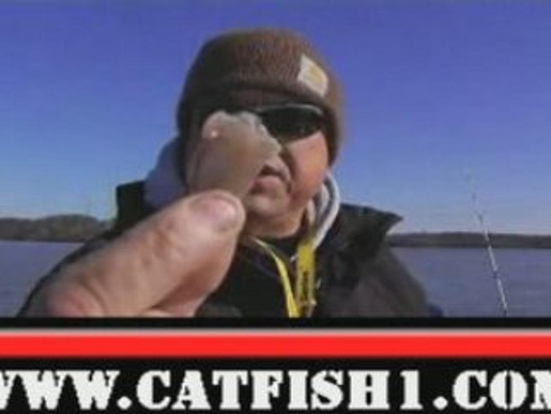 Winter Catfish Tips - Catfish Bait - Fishing Tips
