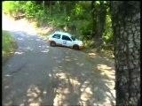 Rallye du  pays viganais 2007
