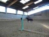 mon cheval et mon père