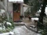 Jeryy saute pour gober la neige 7.01.09